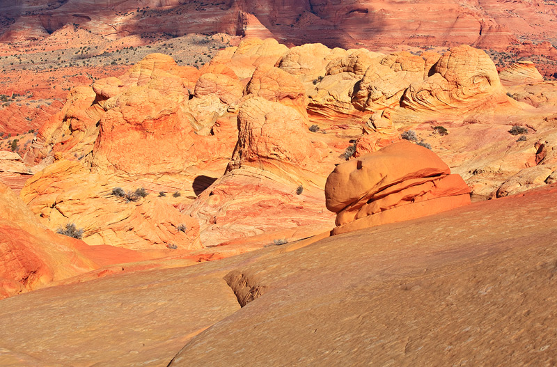 North Coyote Buttes, The Wave, photo