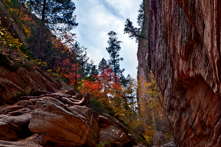 Hidden Canyon,Zion National Park, photo