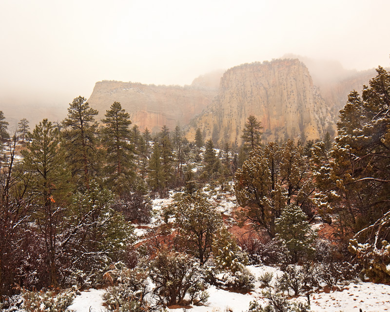 zion national park,utah,snow, photo