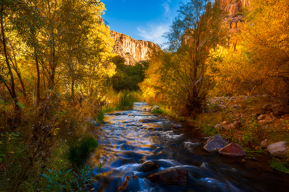 Fall colors linger into December in the Aravaipa Canyon Wilderness area in the Sonoran Desert of southern Arizona. Only 30 people...