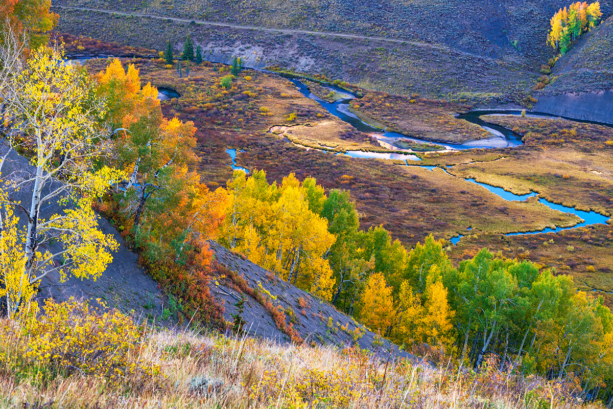 East River, Gothic, Crested Butte, Colorado, photo