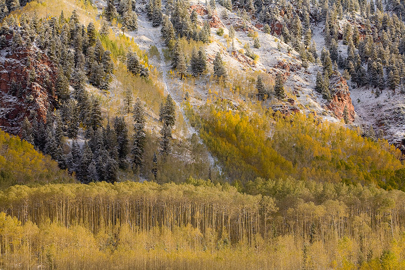 aspen,snow,Snowmass,September,Colorado, photo