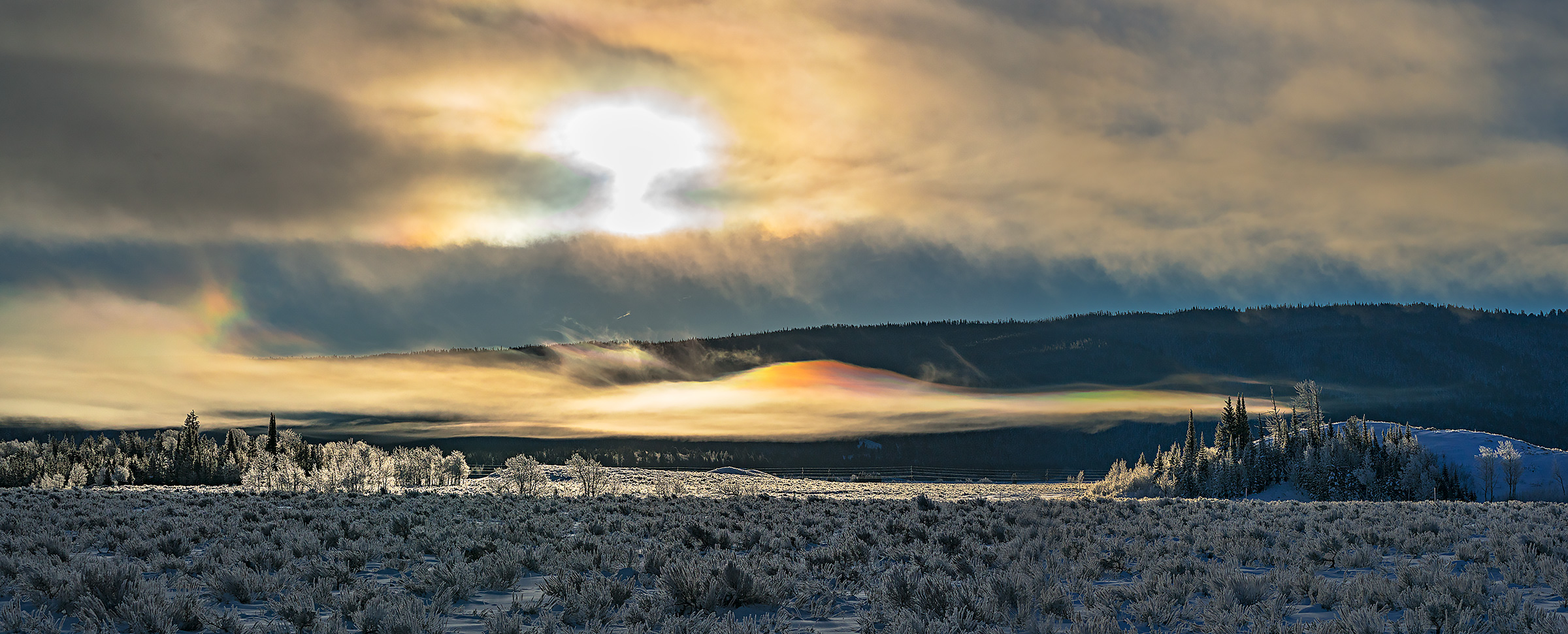Freezing fog at sunrise on a sub-zero morning in Grand Teton National Park.