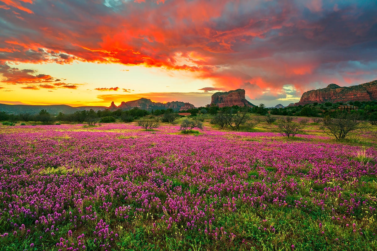 Sedona,clover,Arizona, photo