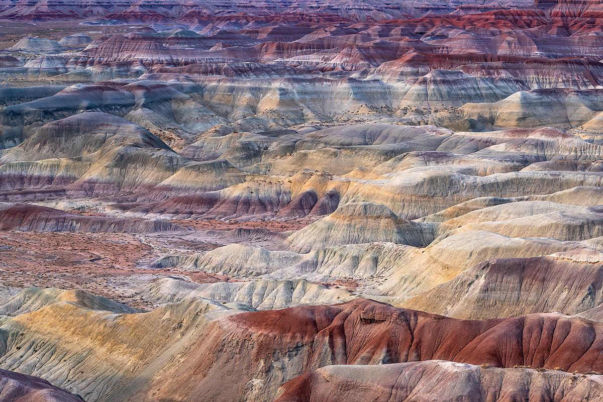 Little Painted Desert, photo