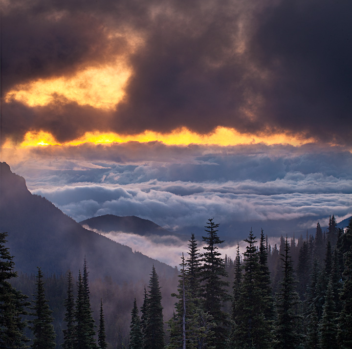 hurricane ridge,olympic national park, photo