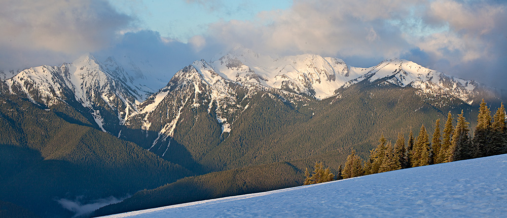 Hurricane Ridge,Olympic National Park,mount olympus, photo