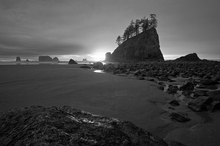 Second Beach,Olympic,Washington, photo