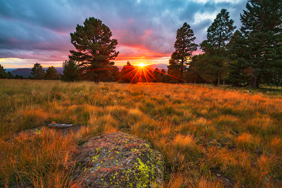 Arizona, Snowbowl, sunset, Aspen Nature Loop, photo