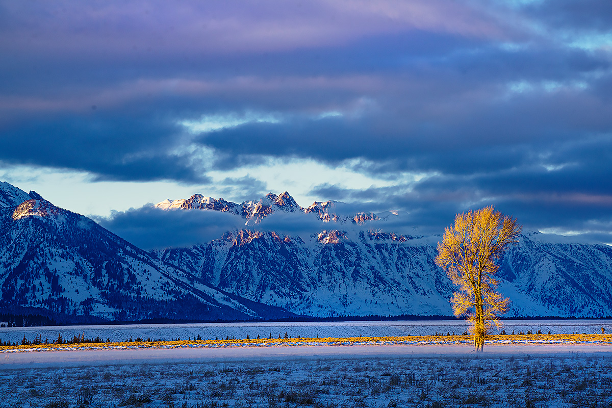 Antelope Flats,Grand Teton,Wyoming, photo