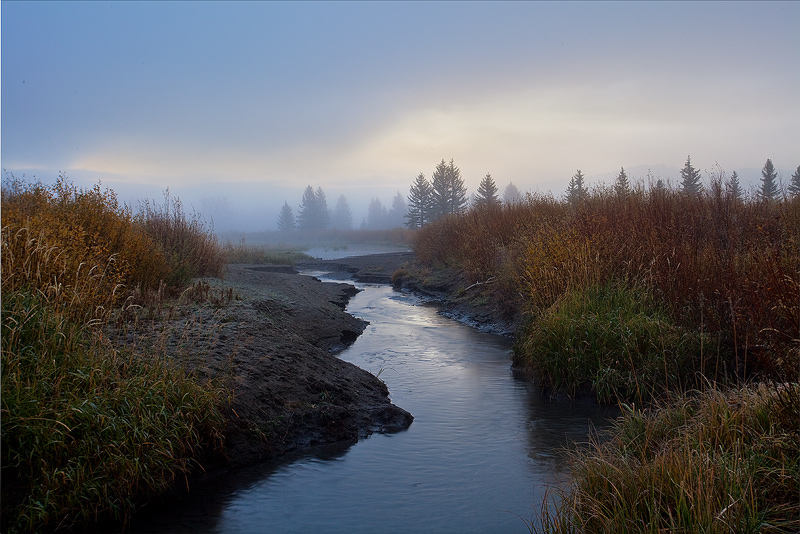 creek,fog,Teton, photo