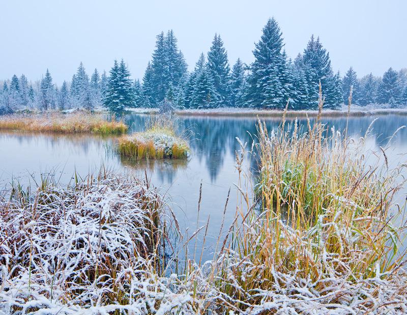 Schwabacher,Grand Teton,snow, photo