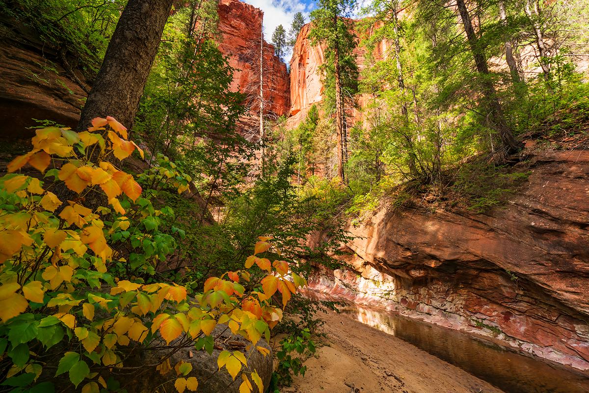West Fork, Oak Creek, Arizona, photo