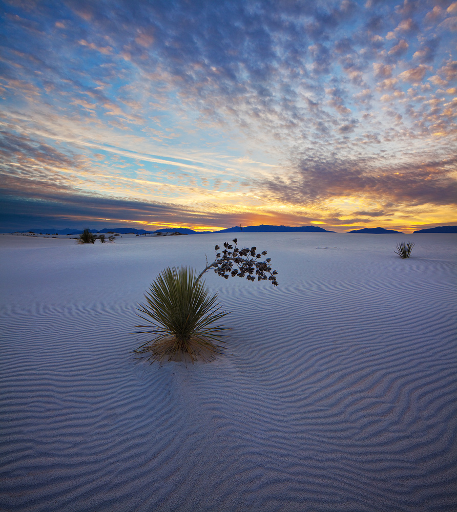 White Sands,New Mexico,sunset, photo