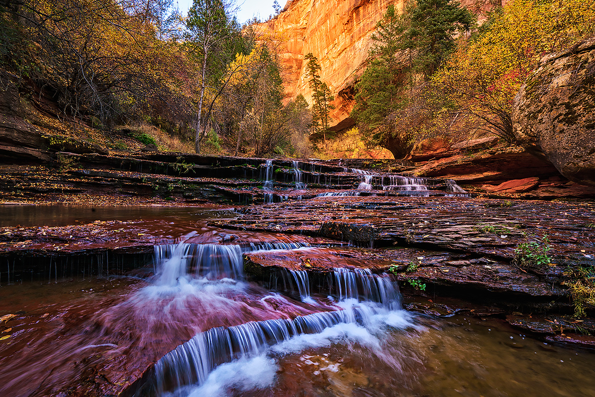 Autumn colors along the Left Fork in Zion